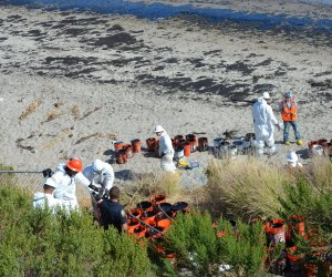 Oil spill cleanup continues in California's shore