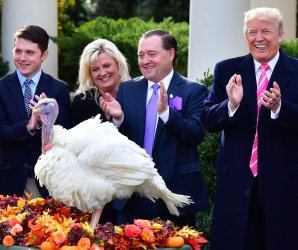 """<img src=""""/img/camera.png"""" style=""""padding: 5px 5px 0 0; display: inline;"""">Trump pardons Drumstick, the National Thanksgiving Turkey"""