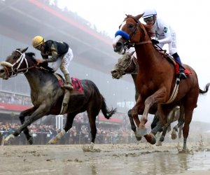 """<img src=""""/img/camera.png"""" style=""""padding: 5px 5px 0 0; display: inline;"""">Justify wins the 143rd running of the Preakness Stakes"""