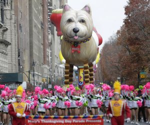 Scenes from the 90th Macy's Thanksgiving Day Parade