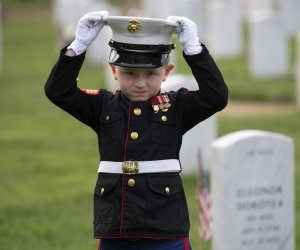 Memorial Day observed across the United States