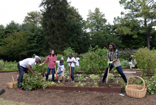 Alonzo Mourning Helps Michelle Obama With Annual White House Kitchen Garden Harvest