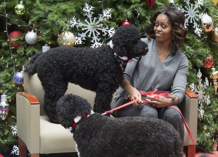 Dog Treats Obama Video