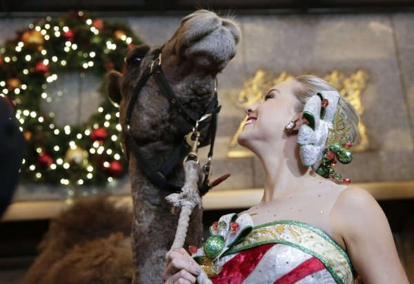 Archbishop Timothy Dolan blesses animals for Rockette's