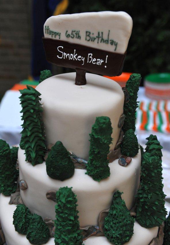 Smokey The Bear Birthday Cake