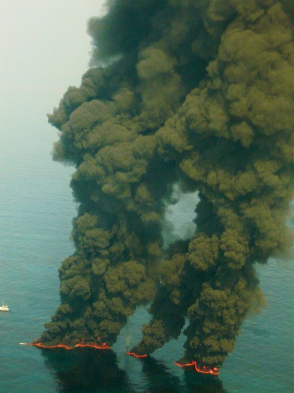 Reponse to Deepwater Horizon disaster in the Gulf of Mexico