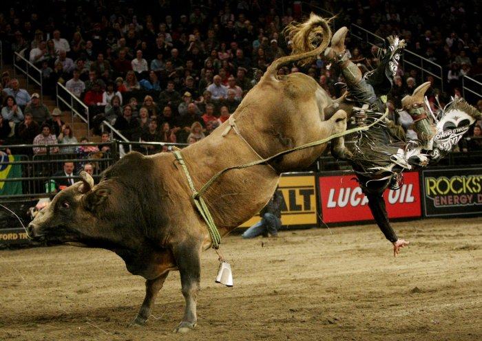 Professional Bull Riders In New York City