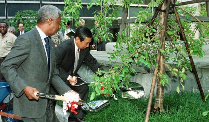 Tree planting at UN