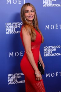 Hollywood Foreign Press Grants Banquet