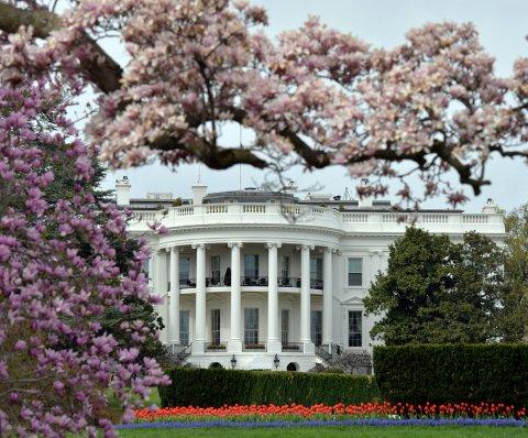 Árbol de Navidad llegó a la Casa Blanca