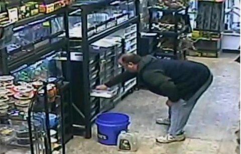 Hombre roba serpiente de 500 dólares de una tienda de animales en Long Island