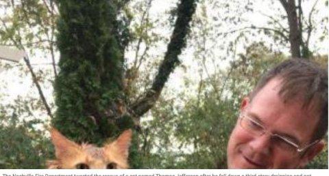 Bomberos de Nashville rescatan a un gato de un tubo de desagüe