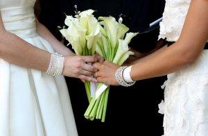 Corte Suprema rechaza postergar matrimonios homosexuales en Carolina del Sur