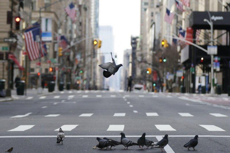 El gobernador de Nueva York, Andrew Cuomo, informó el domingo que 114 personas han muerto por COVID-19 en su estado y requirió al gobierno federal que proporcione más recursos.El gobernador Andrew Cuomo dijo que el estado tiene 15,168 casos confirmados de COVID-19 y 114 muertes. Foto de John Angelillo / UPI