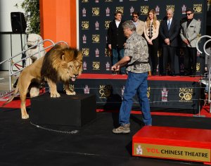 MGM immortalized with a paw print ceremony in Los Angeles