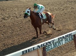 133rd Belmont Stakes