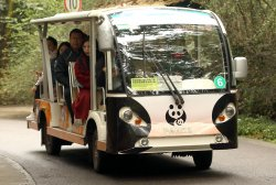 Chinese ride a shuttle through the Panda Research Base in Chengdu, China