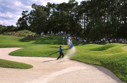 K.J. Choi blasts a shot during the TPC Players in Florida
