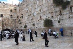 Jews Pray At The Western Wall, Jerusalem