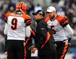 Bengals' head coach Marvin Lewis talks to quarterbacks Carson and Jordan Palmer in Baltimore