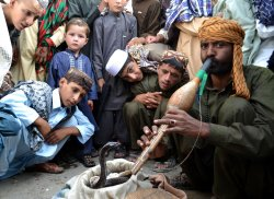 Snake Charmer on a roadside in Pakistan