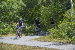President Obama and Family Ride Bikes in Martha's Vineyard