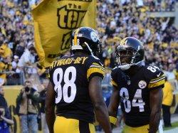Pittsburgh Steelers Darrius Heyward-Bey Celebrates Touchdown