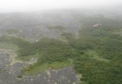 Aerial view of Alaska crash site in Dillingham