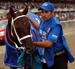 SMARTY JONES FAILS IN TRIPLE CROWN BID AT THE 136th BELMONT STAKES