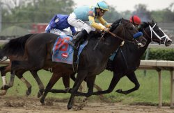 135th Running of the Kentucky Derby