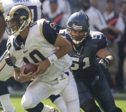 St Louis Rams quarterback MArc Bulger (L) is about to be sacked by Seattle Seahawks linebacker Lofa Tatupu in the second quarter at Qwest Field in Seattle on September 13, 2009. The Seahawks beat the Rams 28-0.