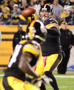Baltimore Raven vs. Pittsburgh Steelers