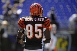 Cincinnati Bengals vs Baltimore Ravens