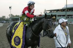 2012 Breeders' Cup World Championships in Arcadia