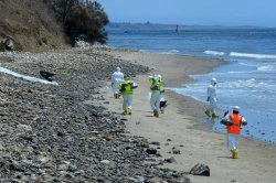 Cause of oil spill probed as cleanup of California coast continues