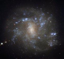 Hubble Spots a Barred Lynx Spiral