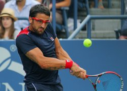 Janko Tipsarevic vs David Ferrer at the U.S. Open in New York