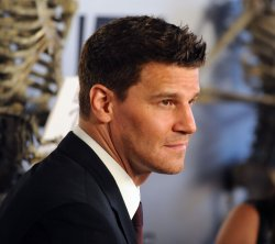 "David Boreanaz attend the ""Bones"" 100th episode celebration in West Holywood"