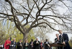 Sen. Richard Blumenthal (D-CT) and Sen. John Kerry (D-MA) speak on health care case in Washington