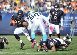 Bears' Forte runs against Panthers in Chicago