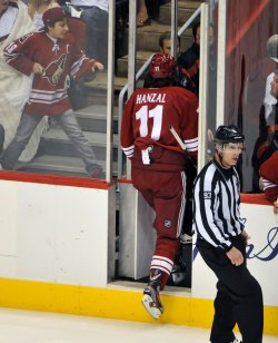 Coyotes Hanzal leaves the ice in Arizona