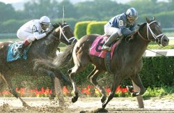 138TH RUNNING OF THE BELMONT STAKES