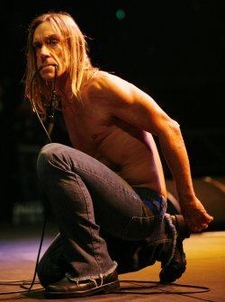 IGGY POP IN CONCERT IN PARIS