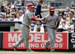 Los Angeles Angels play the New York Yankees at Yankee Stadium in New York