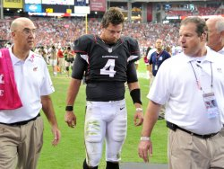 Kolb leaves game after injury in Arizona