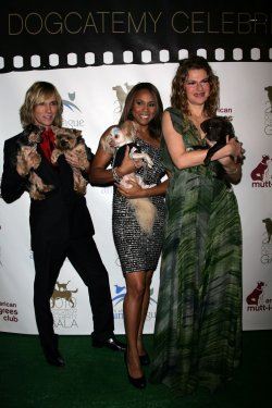 Marc Bouwer, Sandra Bernhard and Deborah Cox arrive at the 5th Annual Dogcatemy Celebrity Gala in New York