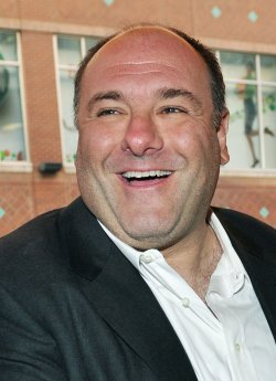 Sopranos Star Gandolfini Dies of Heart Attack in Italy