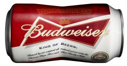 Anheuser Busch introduces new bottle can for Budweiser brand beer