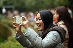 Tourists take videos of pandas at a panda center in Chengdu, China