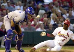 St. Louis Cardinals vs Kansas City Royals baseball